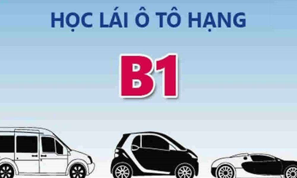 hoc-bang-lai-xe-hang-b1